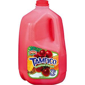 Walt Dfs Tampico Tropical Punch 24 12oz Cans Dfs